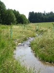 příklady revitalizací potoků