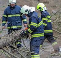 jihlava-vichrice-vitr-pocasi-spadly-strom-hasici-08_denik-630-16x9.jpg